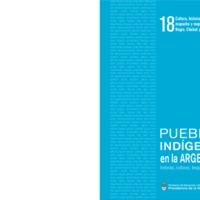 18 mapuche y mapuche-tehuelche.pdf